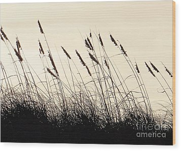 Seaside Oats Wood Print