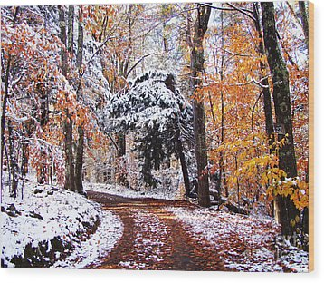 Seasons Cross Wood Print