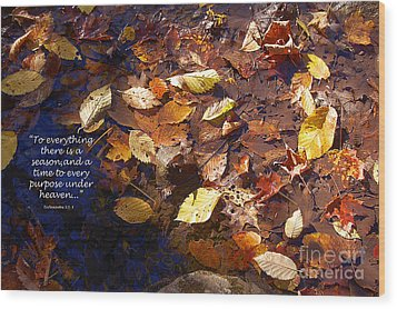 Wood Print featuring the photograph Seasons by Diane E Berry