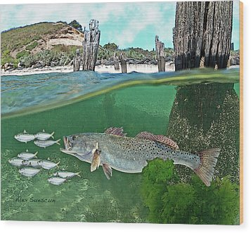 Seatrout Attack Wood Print by Alex Suescun