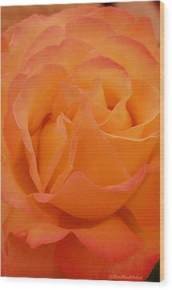 Seattle Rose Wood Print