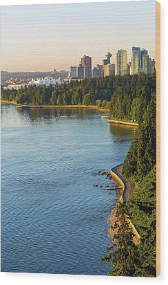 Seawall Along Stanley Park In Vancouver Bc Wood Print by David Gn
