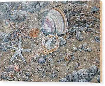Seaweed And Shells Wood Print by Val Stokes