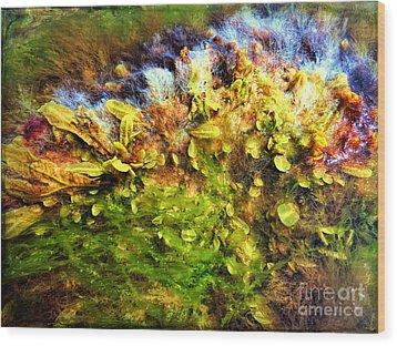 Seaweed Grunge Wood Print by Todd Breitling