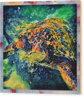 Sebastian The Turtle Wood Print