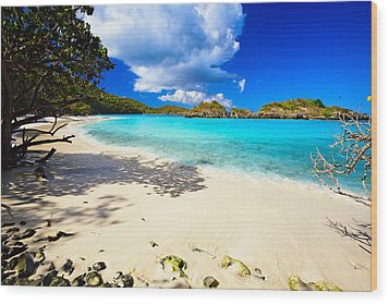 Secluded  Beach Wood Print by George Oze