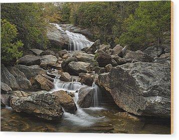 Second Falls - Blue Ridge Falls Wood Print by Andrew Soundarajan