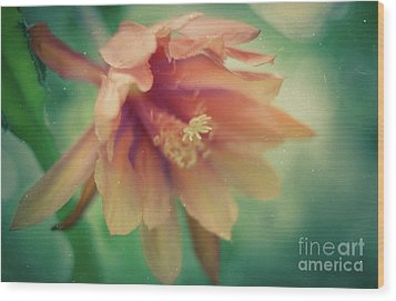 Wood Print featuring the photograph Secret Garden by Ana V Ramirez