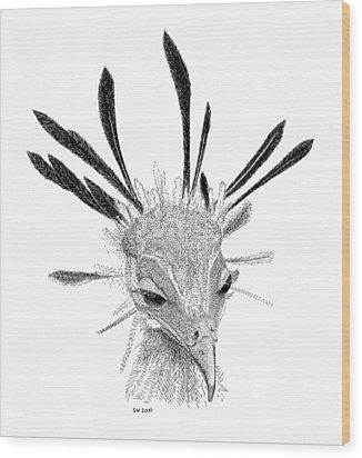 Secretary Bird Wood Print