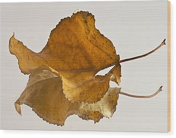 Seeing Double Autumn Leaf  Wood Print by Sandra Foster