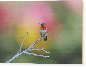 Seeing Red Wood Print by Lynn Bauer