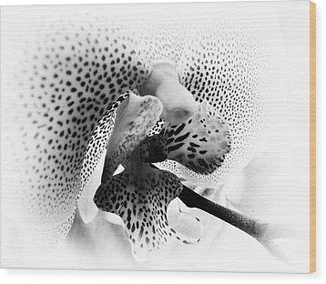Seeing Spots Wood Print