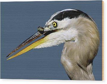 Seeing Your Captor Eye To Eye Wood Print