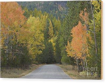 Selkirk Color Wood Print by Idaho Scenic Images Linda Lantzy