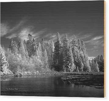 Semiahmoo River Wood Print by Tom Buchanan