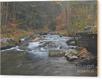 Seneca Creek Autumn Wood Print by Randy Bodkins