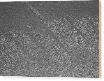 Sensibilities 2009 1 Of 1  Wood Print