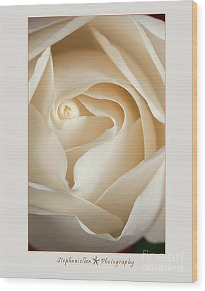 Sensual White Rose Wood Print by Stephanie Hayes