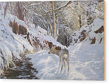 Sentier Des Biches Wood Print by Julian Wheat