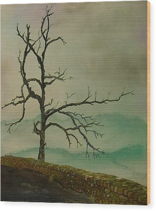 Sentinel Of The Shenandoah  Wood Print by Nicole Angell