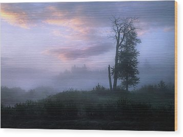 Wood Print featuring the photograph Sentinels In The Valley by Dan Jurak