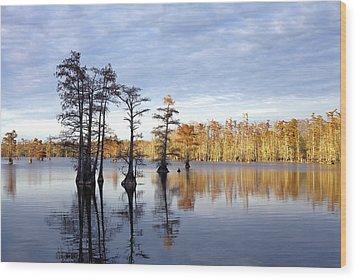 Sentinels Of The Lake Wood Print