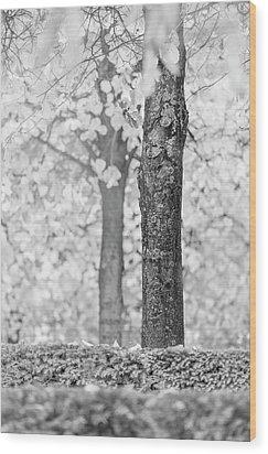 Separate Wood Print by Hitendra SINKAR