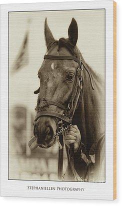 Sephia Racehorse Wood Print