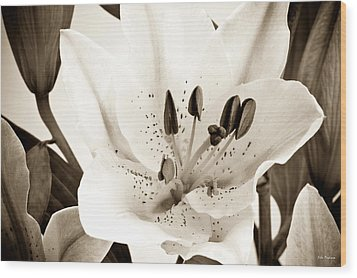 Sepia Toned Asian Lily Wood Print