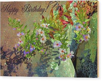 September Birthday Aster Wood Print by Kristin Elmquist