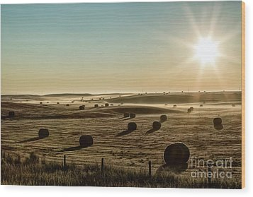 Wood Print featuring the photograph September Hay by Brad Allen Fine Art