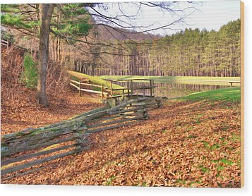 Wood Print featuring the photograph Serene Lake by Gordon Elwell