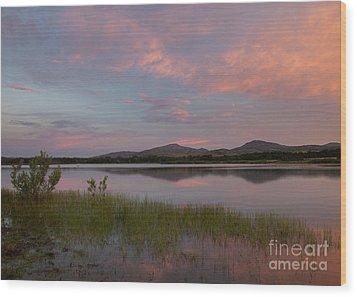 Serene Lake Wood Print by Iris Greenwell