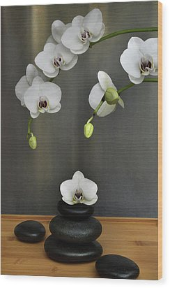 Wood Print featuring the photograph Serene Orchid by Terence Davis