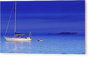 Serene Seas Wood Print by Holly Kempe