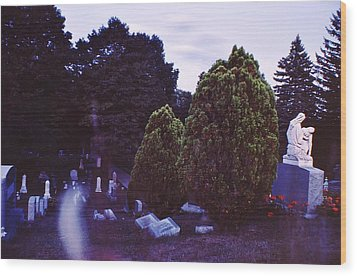 Serene Visitation Wood Print by Don Youngclaus