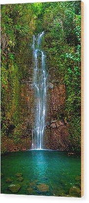Serene Waterfall Wood Print by Monica and Michael Sweet