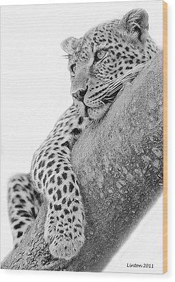 Serengeti Leopard Wood Print