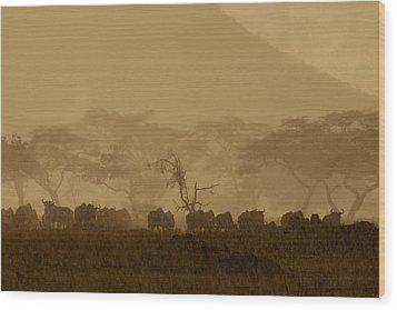 Serengeti Monsoon Wood Print