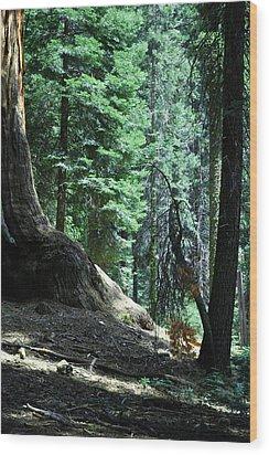 Serenity Wood Print by Brigid Nelson