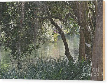 Wood Print featuring the photograph Serenity by Carol  Bradley