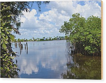 Wood Print featuring the photograph Serenity In Matlacha Florida by Timothy Lowry