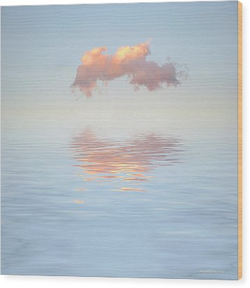 Serenity Now Wood Print by Jerry McElroy