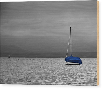 Wood Print featuring the photograph Serenity by Ron Dubin