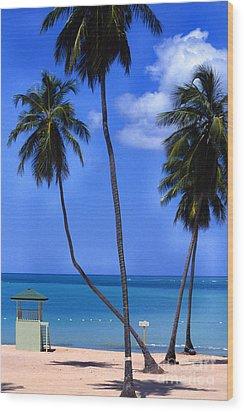 Seven Seas Beach Puerto Rico Wood Print by Thomas R Fletcher