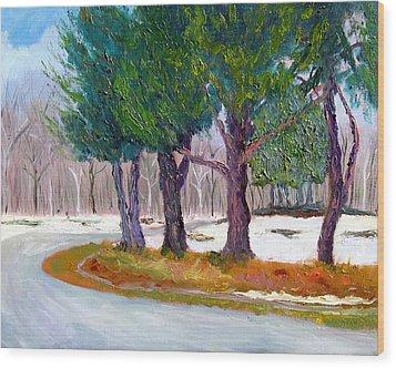 Sewp Spring Thaw Wood Print by Stan Hamilton