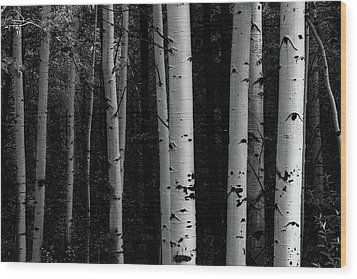 Wood Print featuring the photograph Shades Of A Forest by James BO Insogna