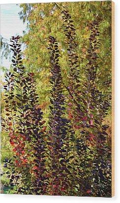 Shades Of Fall Wood Print by Deborah  Crew-Johnson