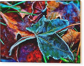 Shades Of Washington Wood Print by Gwyn Newcombe