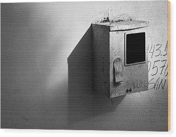 Shadow Box 2006 1 Of 1 Wood Print